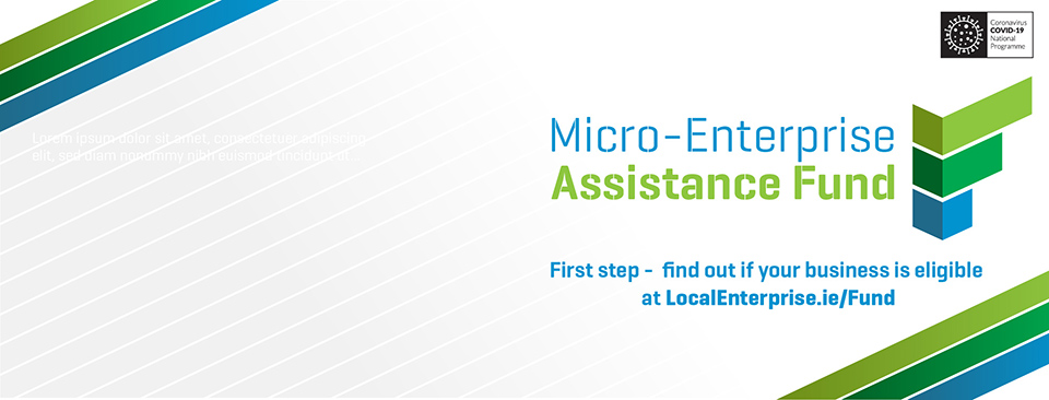 Micro Enterprise Assistance Fund