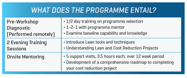 Lean for Micro Programme