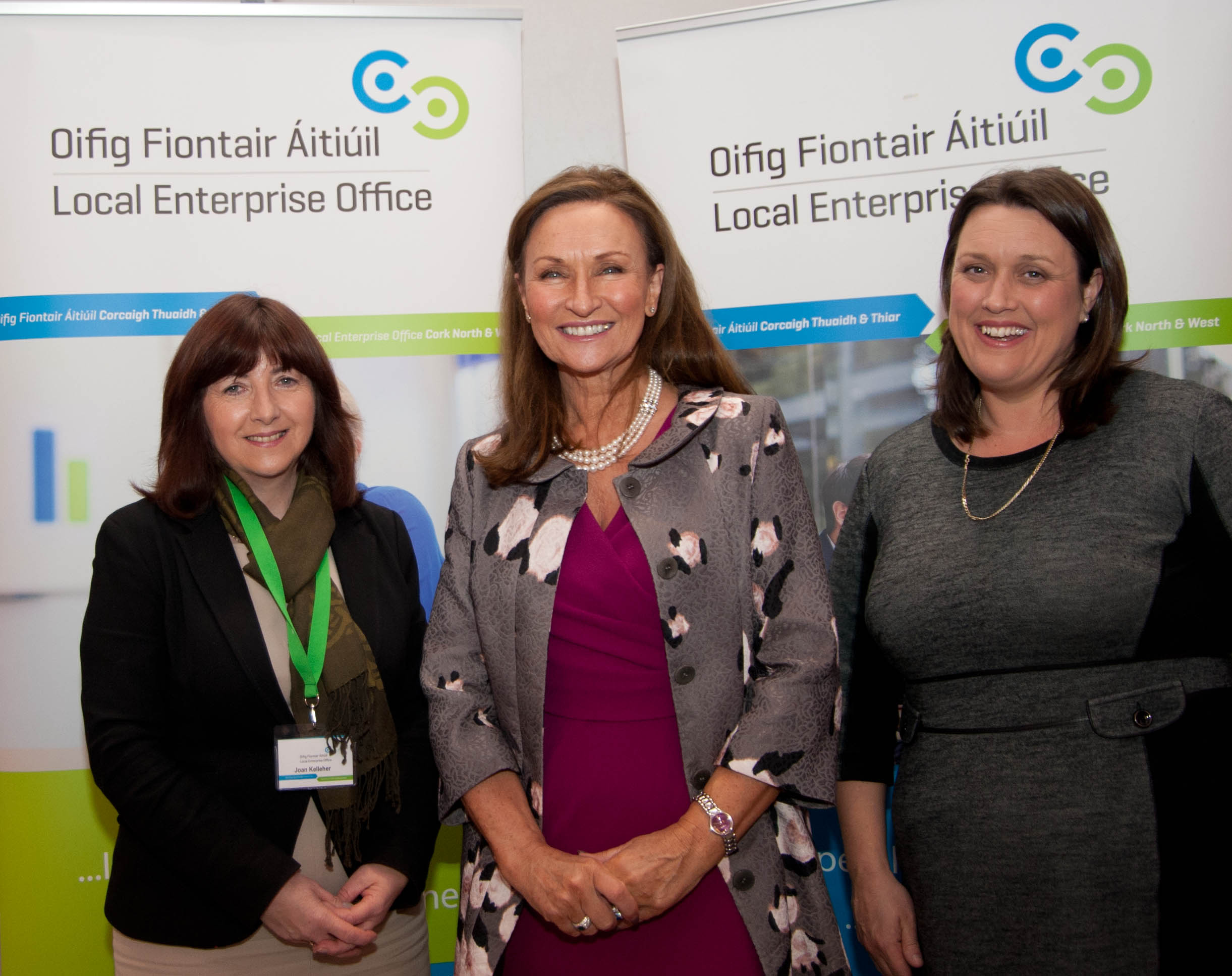 successful women in business networking event held in north cork local enterprise office hosts successful women in business networking event in charleville guest motivational speaker celia holman lee