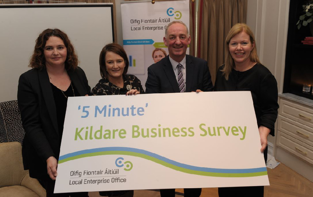 Kildare business survey