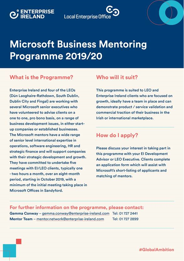 Microsoft Business Mentoring