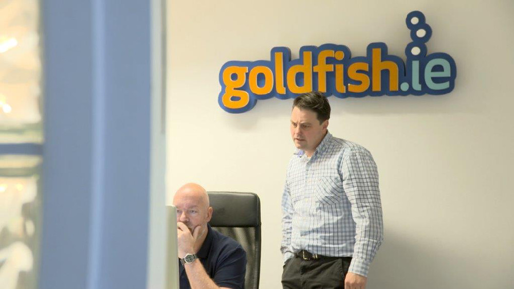 Goldfish.ie 2